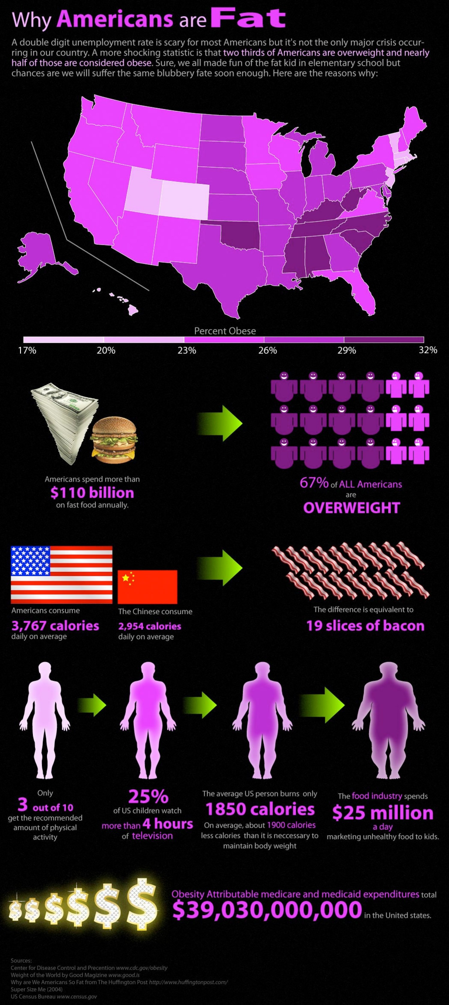 20. Why Americans are Fat