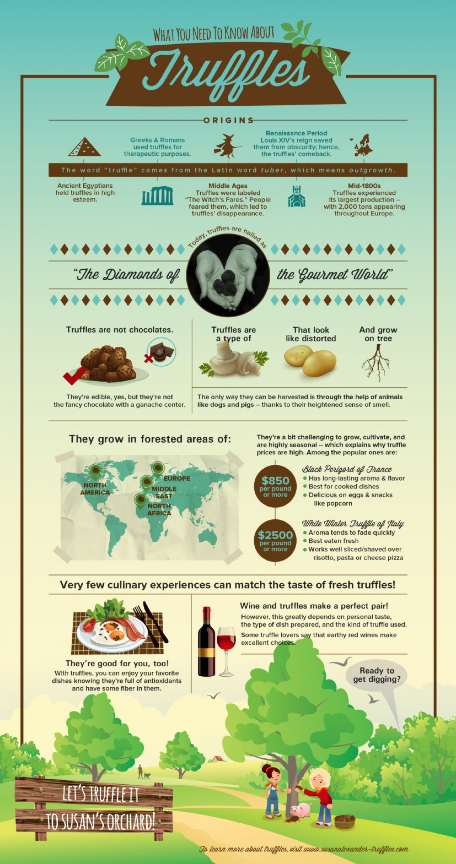 09 what-you-need-to-know-about-truffles_532b51c90d2c2_w1500