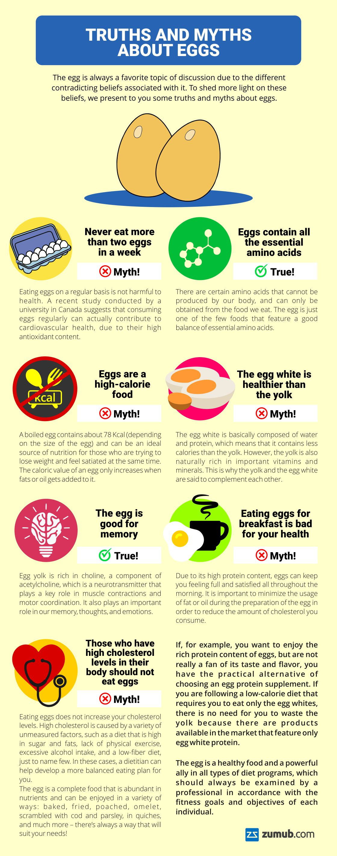 Debunking the Myths and Exploring the Truths Related To Eggs