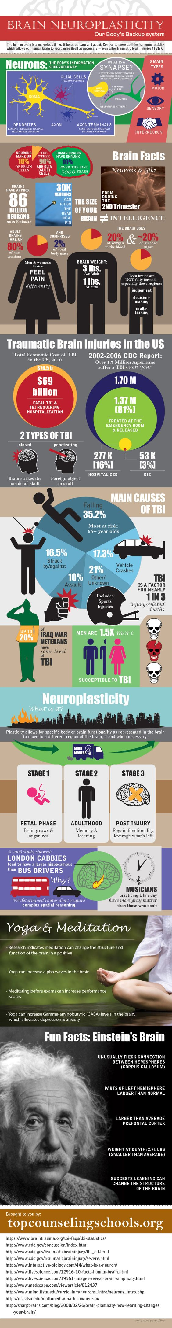 neuroplasticity advantages Infographic
