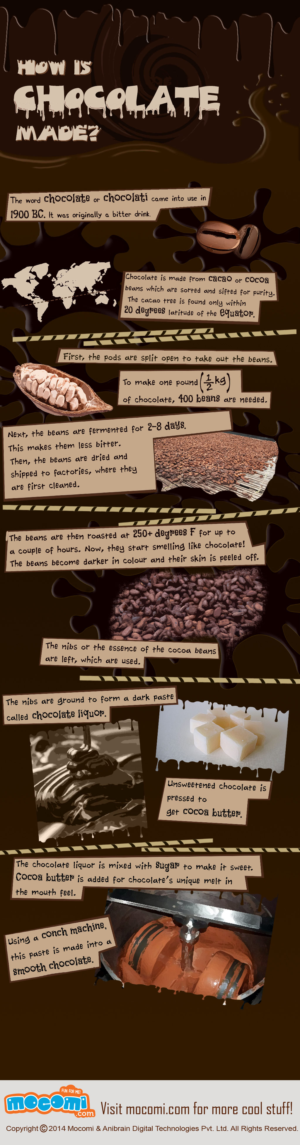 how is chocolate made infographics