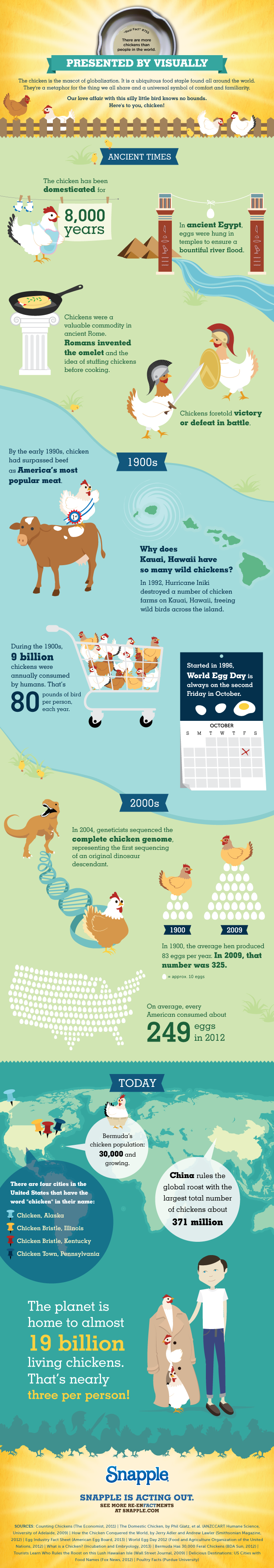 Chickens are more than Human infographics