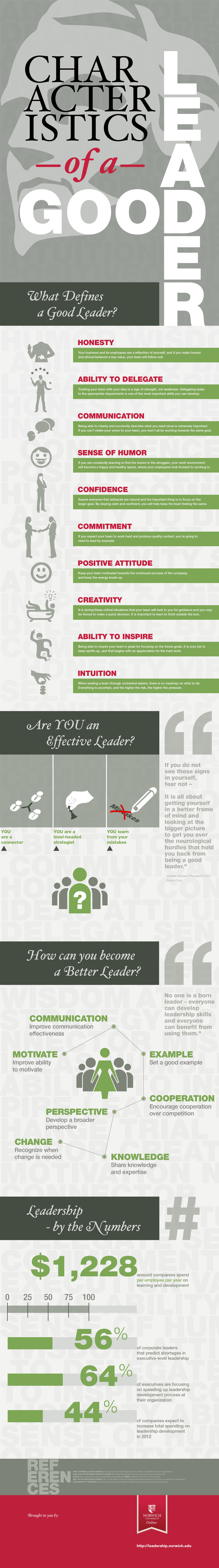 characteristics of a good leader infographics
