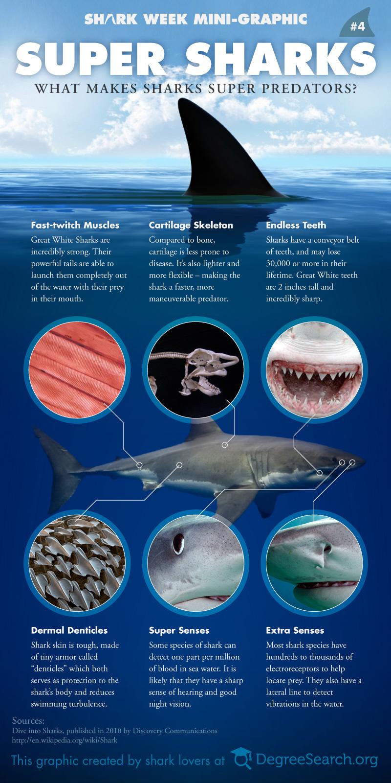super-sharks