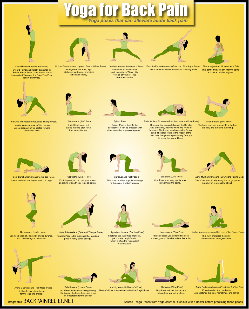 yoga for back pain infographics