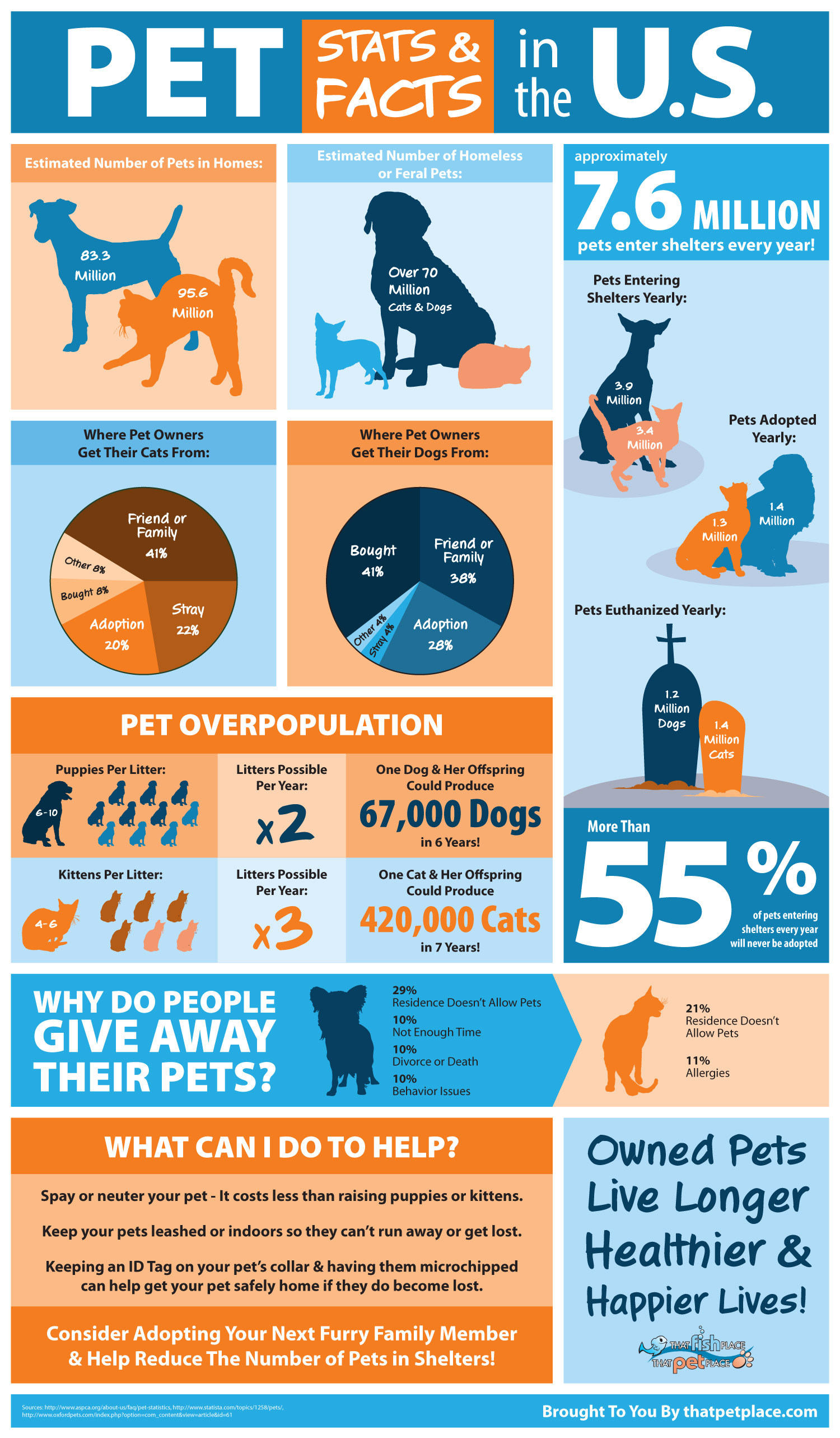 Pet over population