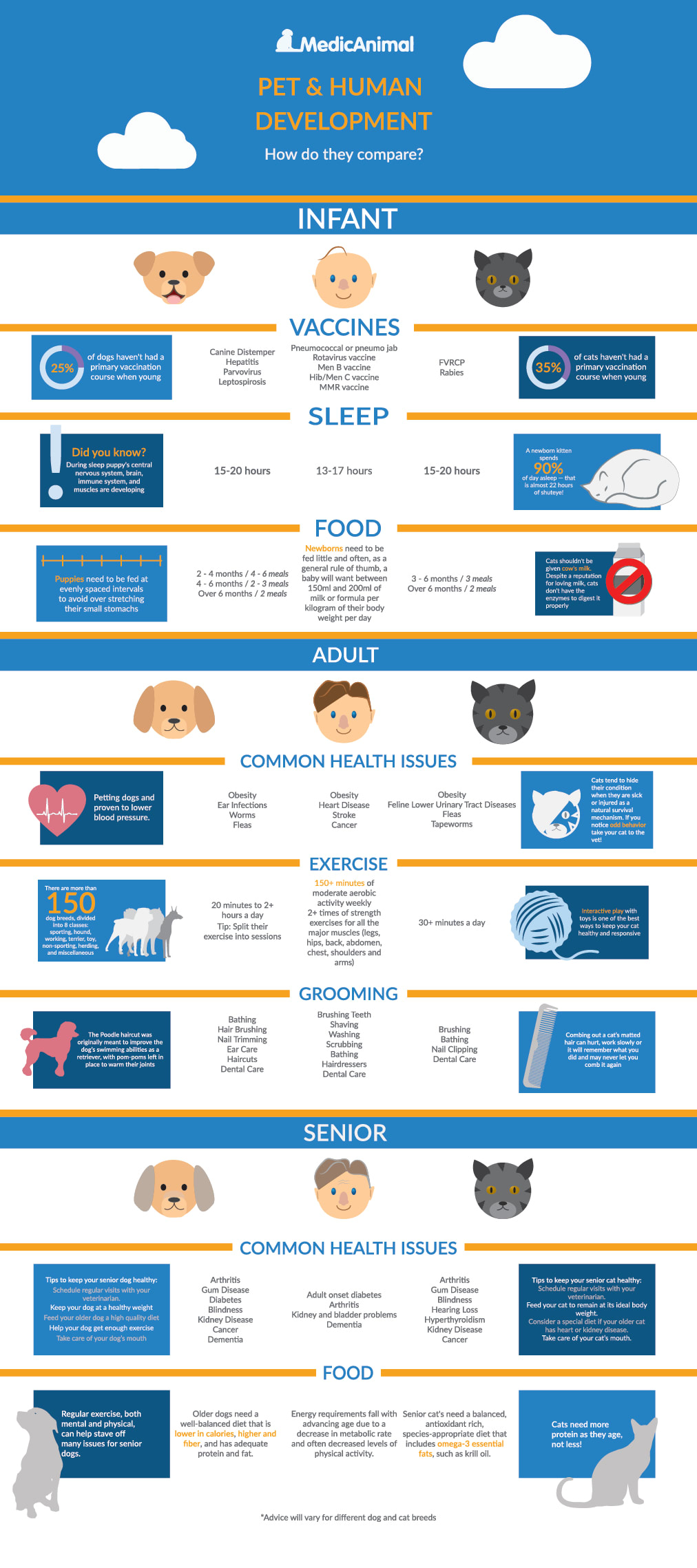 pet and human development infographic