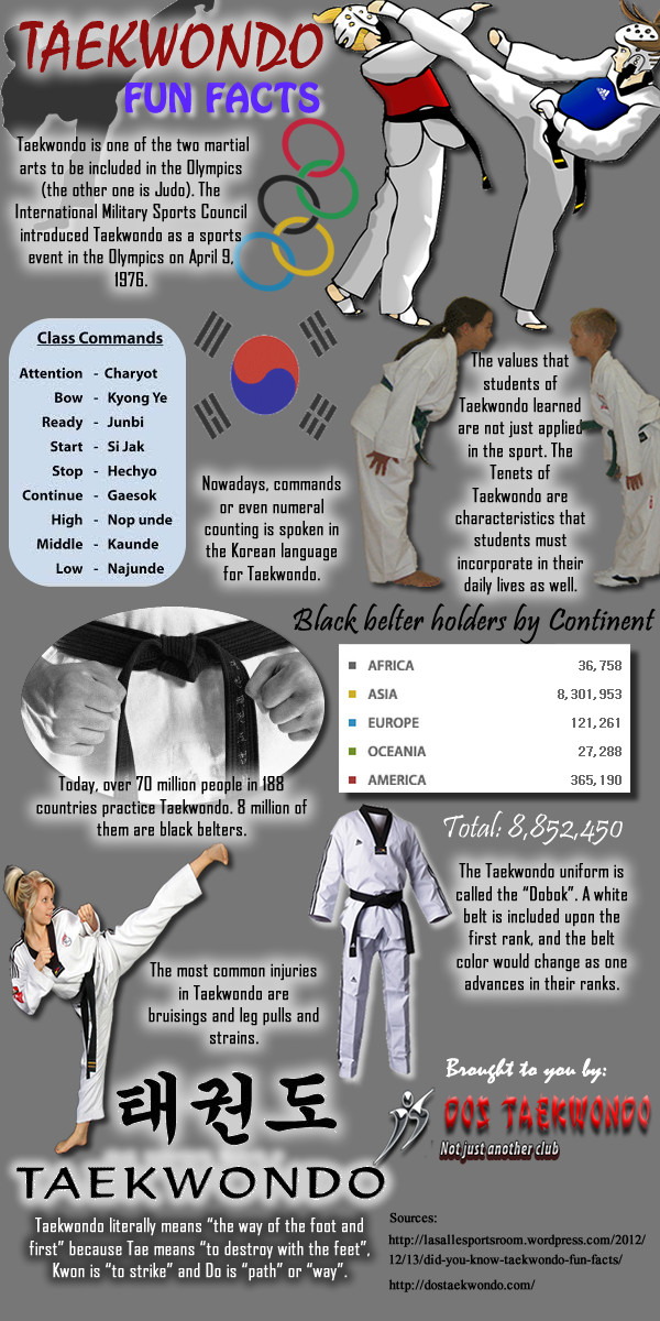 taekwondo fun facts