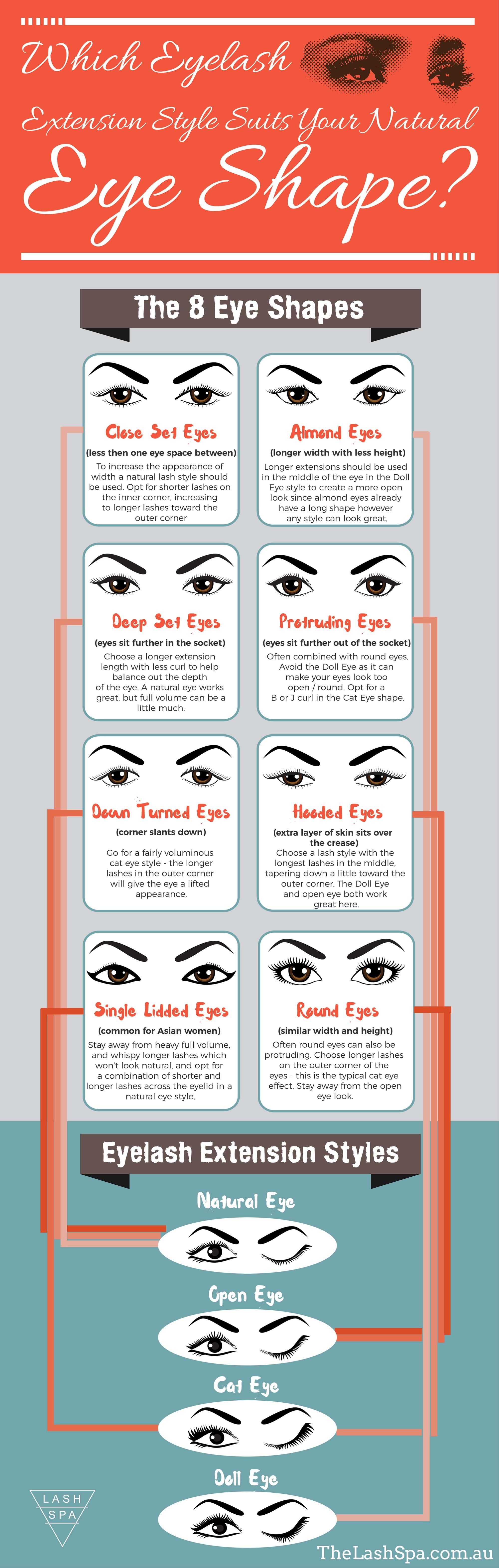 Eyelash Style Infographic