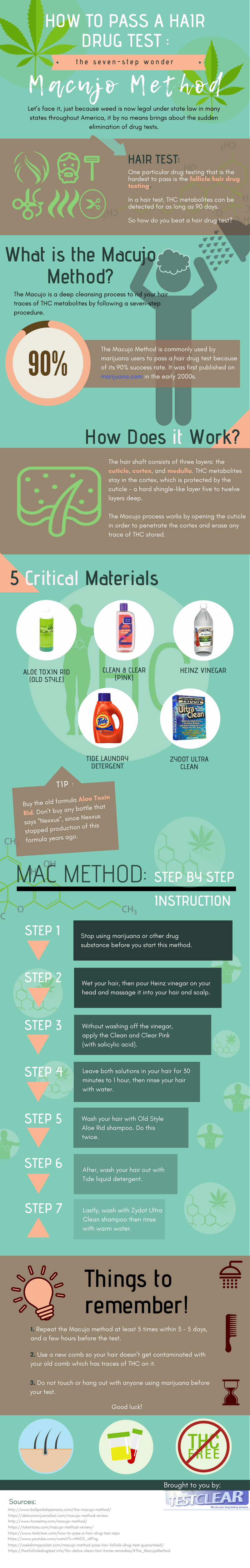 Macujo Hair Cleansing Guide Infographic