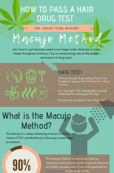 Macujo Hair Cleansing Guide