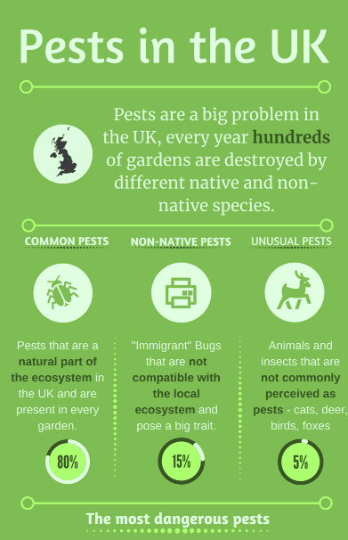 Pests in UK