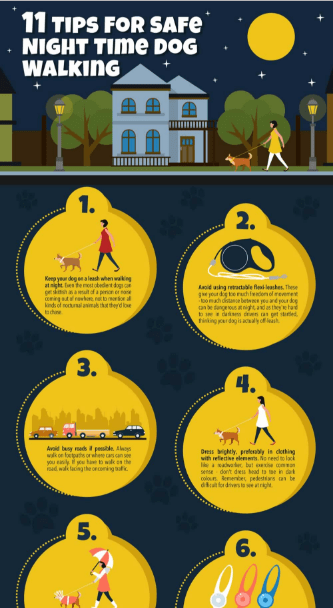 Tips for Night Time Dog Walking