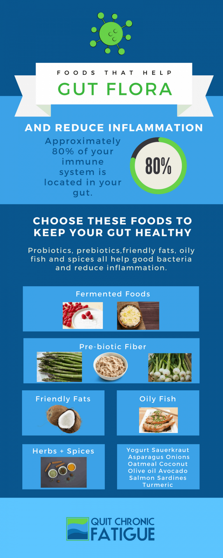 Foods that help gut flora