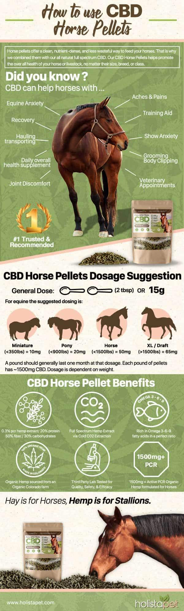 How to use CBD horse pellets with your horse