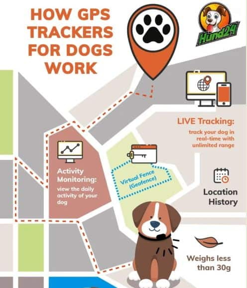 How GPS Trackers for Dogs Work infographic