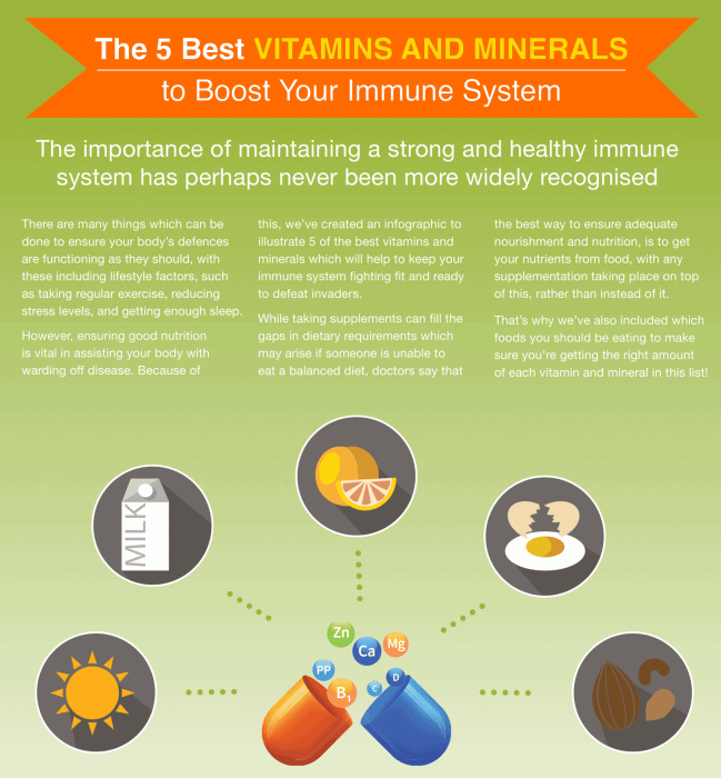 The Best 5 Vitamins and Minerals to boost your Immune System infographic