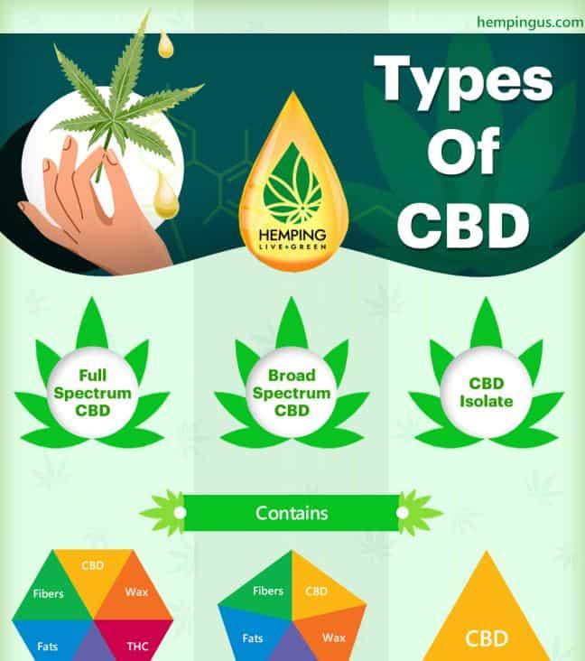 Full spectrum CBD vs Broad spectrum CBD Vs CBD isolate infographic