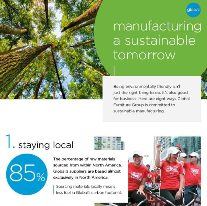 Building a Sustainable Future infographic