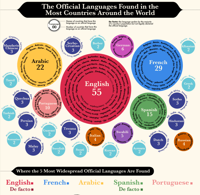 Which Languages Are the Official Languages for the Most Countries infographic
