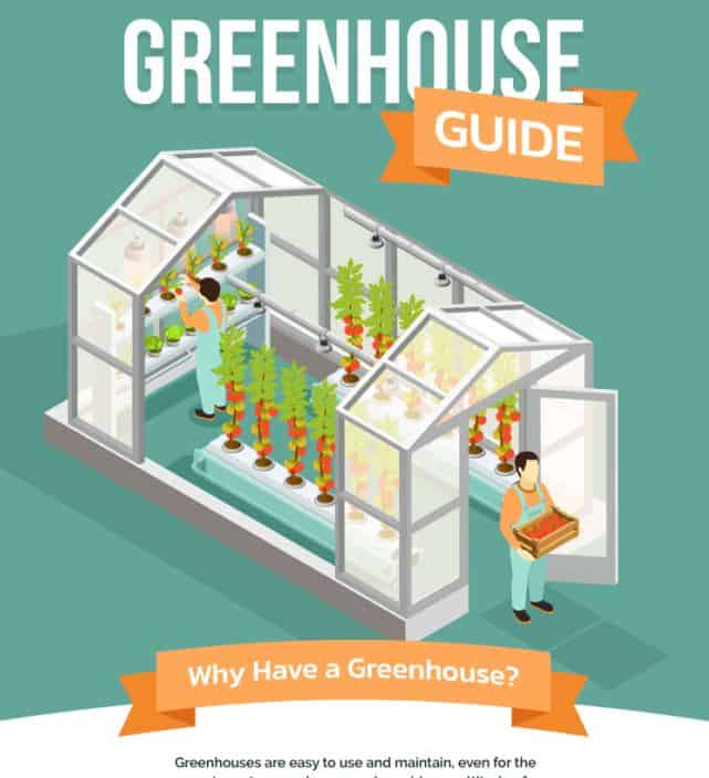 Greenhouse Guide - Grow your Own Food infographic