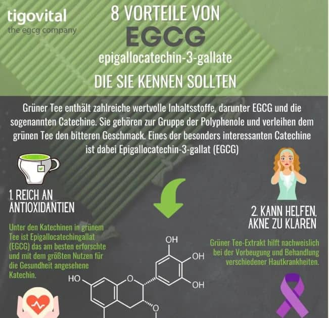 8 benefits of EGCG you should know about infographic