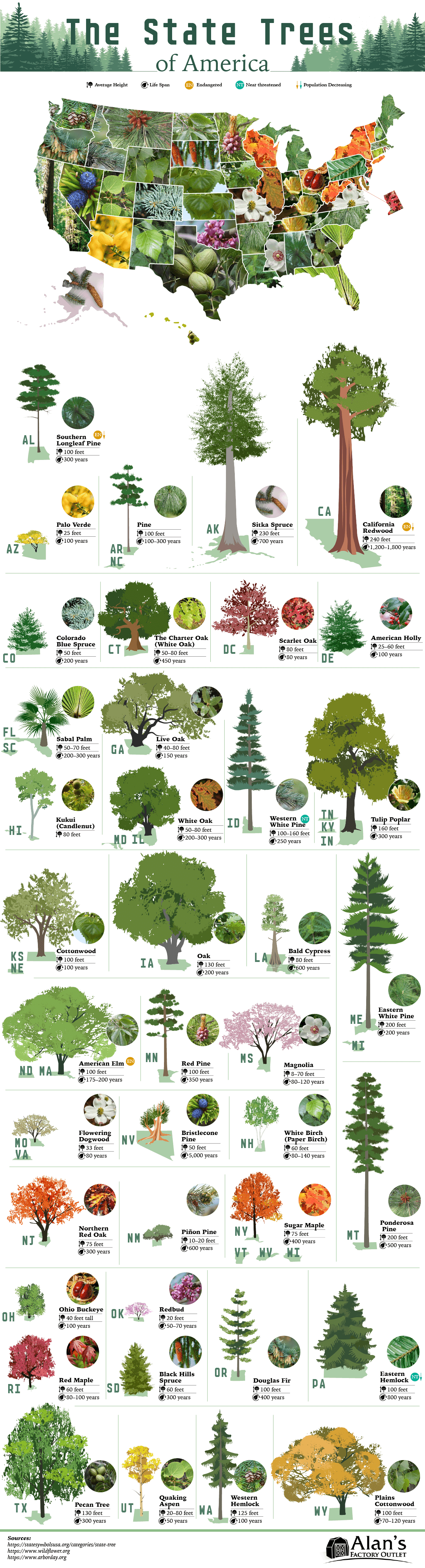 The Official State Trees of America