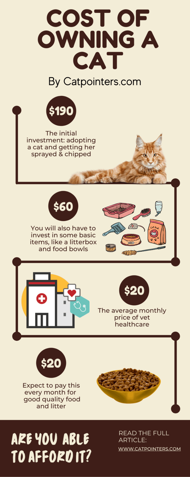 How much does it cost to own a cat