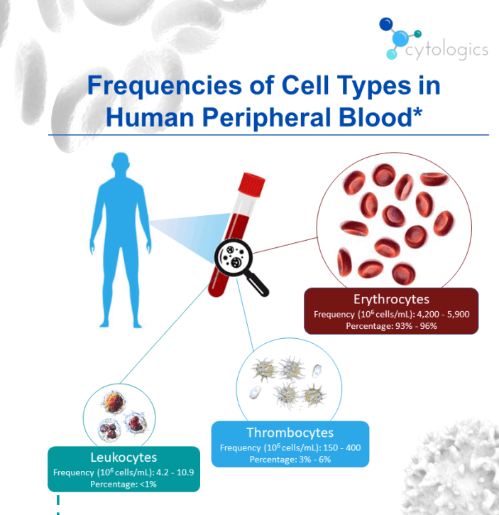 Frequencies of Cell Types in Human Peripheral Blood infographic