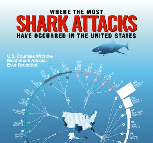 The U.S. Counties With the Most Shark Attacks Ever Recorded infographic