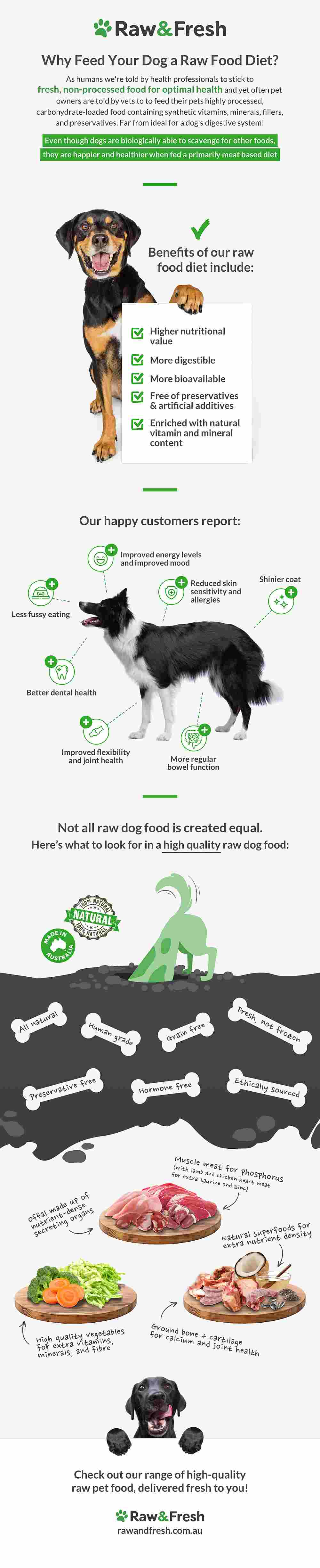 Why Feed Your Dog A Raw Food Diet